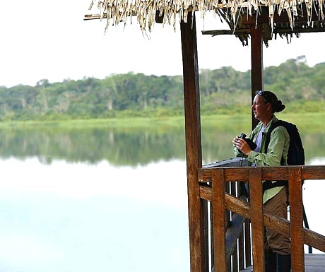 Amazon - Napo River